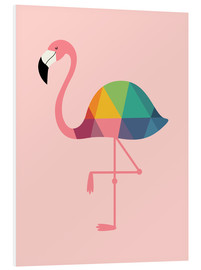Forex  Rainbow Flamingo - Andy Westface