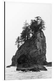 Aluminio-Dibond  Rocks at Second Beach in Olympic National Park, USA - Peter Wey