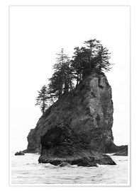 Póster  Rocks at Second Beach in Olympic National Park, USA - Peter Wey
