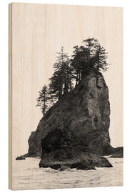 Cuadro de madera  Rocks at Second Beach in Olympic National Park, USA - Peter Wey