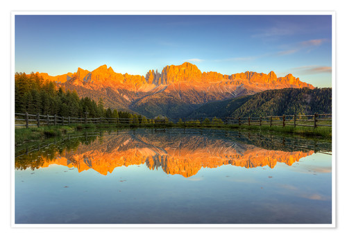 Póster Alpenglow on the rose garden in the Dolomites in South Tyrol