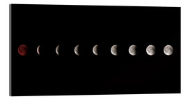 Cuadro de metacrilato  Moon phases 2018 - WildlifePhotography