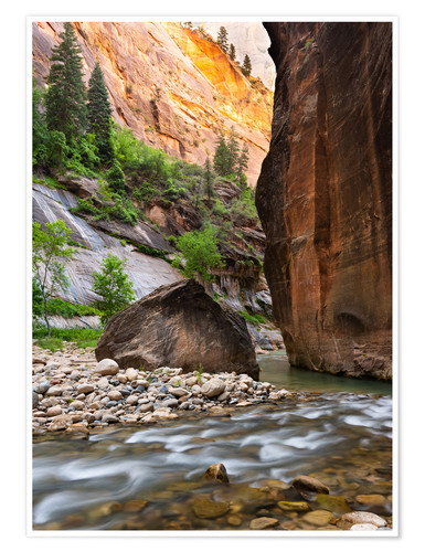 Póster The Narrows, Zion National Park, Utah, USA