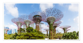 Póster  The Supertree grove in Singapore - Matteo Colombo