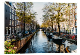 Cuadro de metacrilato  Beautiful Autumn In Amsterdam City - Radu Bercan