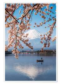 Póster  Mt. Fuji in springtime with cherry trees - Matteo Colombo