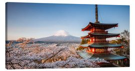 Lienzo  Pagoda and Mt. Fuji with cherry blossom, Japan - Matteo Colombo