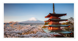 Póster  Pagoda and Mt. Fuji with cherry blossom, Japan - Matteo Colombo