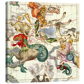 Lienzo  Atlas celestial - Ignace Gaston Pardies