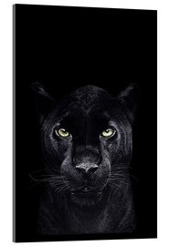 Metacrilato  Black panther on black - Valeriya Korenkova