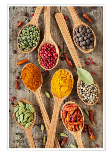 Póster Colorful spices in wooden spoons