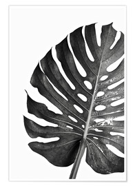 Póster  Monstera negro 03 - Art Couture